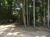 181-183 High Central Road Macleay Island, QLD 4184