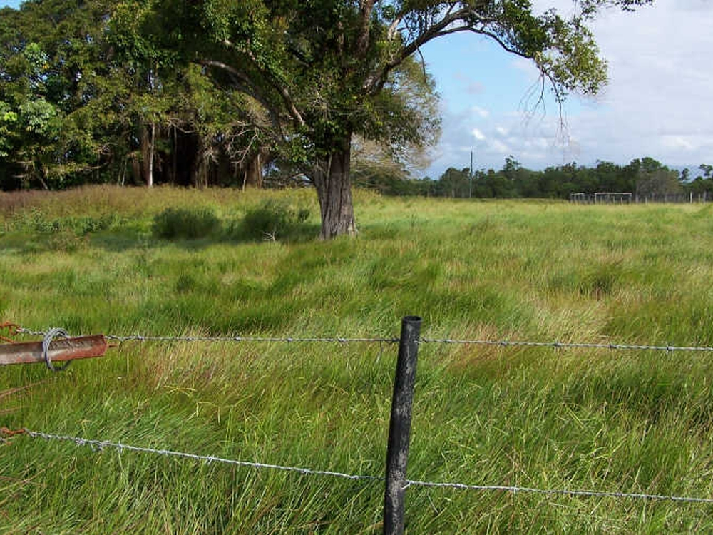 Lot 7 Tully Gorge Road Tully, QLD 4854