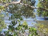 9 Goodsell Crescent Lamb Island, QLD 4184
