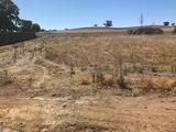 Allotment 20 Main Road Rhynie, SA 5412