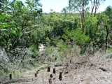 32 Calm Waters Crescent Macleay Island, QLD 4184