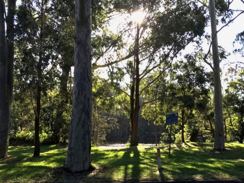 4 Riverview Drive Wyong, NSW 2259