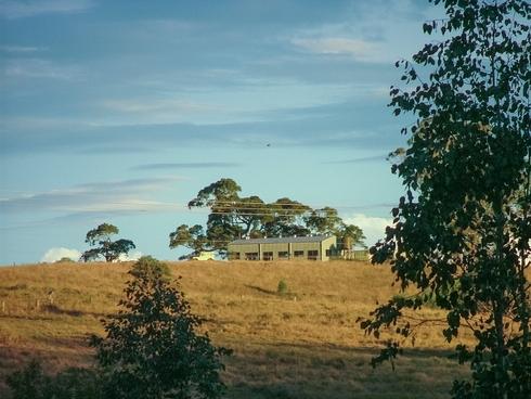 465 Ellangowan Myrtle Creek Road Ellangowan, NSW 2470