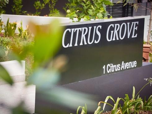 Unit 39/1 Citrus Avenue Hornsby, NSW 2077