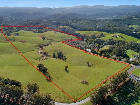 1383 Dunoon Road Dunoon, NSW 2480