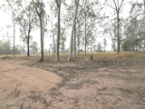 Lot 27/8 Forest Avenue Glenore Grove, QLD 4342
