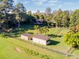 10 Birdlife Court Nerang, QLD 4211
