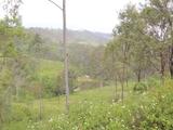 Lot 145 Brisbane Valley Highway Ottaba, QLD 4313