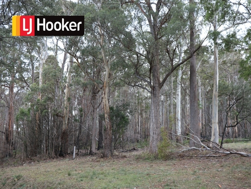 Lot 1 Gardiners Creek Road St Marys, TAS 7215